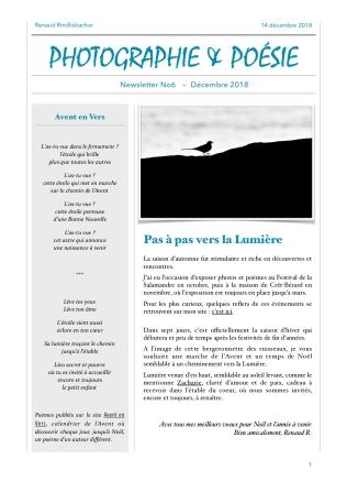 RR-Newsletter-No6a