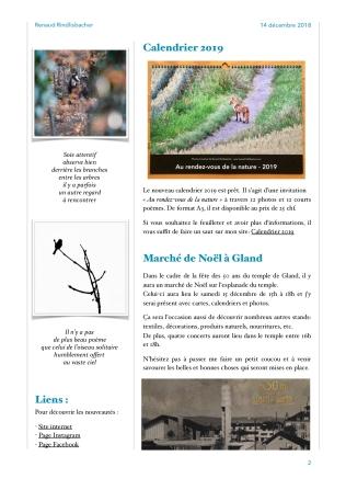RR-Newsletter-No6b